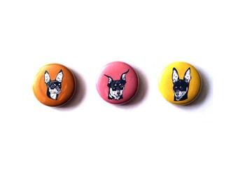 Doberman pinscher dog magnet set