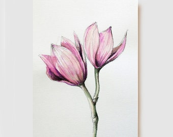 Orchids - Flower - Original charcoal drawing and Ink color on acid free paper Canson 200 gr. by Cristina Ripper