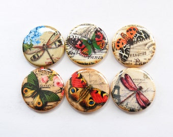 Butterfly Magnets, Dragonfly, Nature Magnets, button magnets, Butterflies, Fridge Magnets, Kitchen Magnets, stocking stuffer (3349)