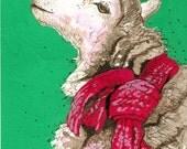 Chloe, Sheep Christmas Card