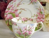 Royal Albert Blossom Time Teacup Duo 1950s