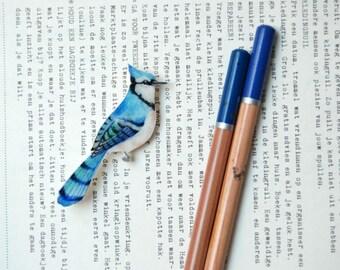 Blue Jay Brooch. Hand drawn bird brooch for bird lovers. Bird jewelry