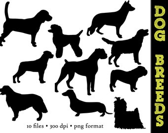 Dog Silhouettes // Yorkie, Golden retriever, boxer, Dachshund, Rottweiler, Poodle Silhouette // Animal Clipart // Dog Breed Silhouettes
