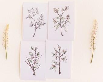 Wildflower Botanical Print Set, Set of 4 Floral Prints