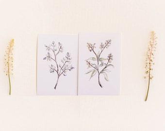 Wildflower Botanical Print Set, Set of 2 Floral Prints