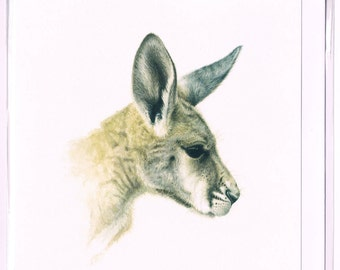 Square Greeting Card with Young Red Kangaroo