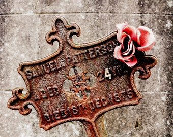 Graveyard Print - Rust and Rose Fine Art Photograph - irish Heritage - Old Cemetery Photography - Ancestor Art - 8x12