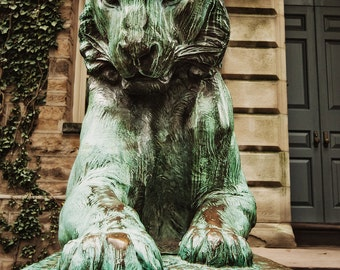 Princeton University, Fine Art Photography, 'Princeton Tiger 2,' New Jersey Photo, NJ Print, Graduation Gift, Ivy League College
