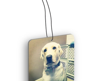 Pets Photo Custom Air Freshener - Single
