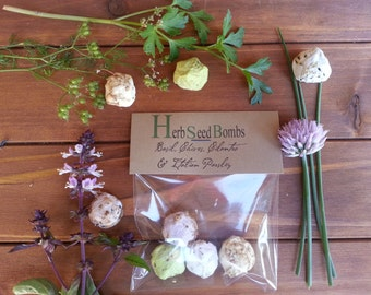 how to make paper mache seed bombs