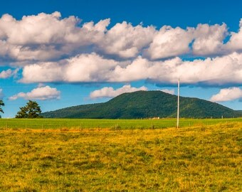 Farm field and the Blue Ridge Mountains in the Shenandoah Valley, Virginia - Landscape Fine Art Print or Wrapped Canvas Home Decor