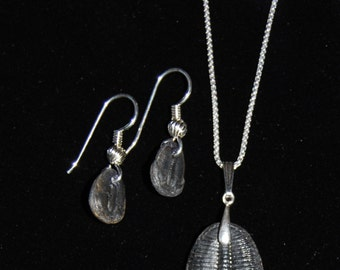 Sterling Silver  Necklace with Trilobite Pendant and Matching Earrings
