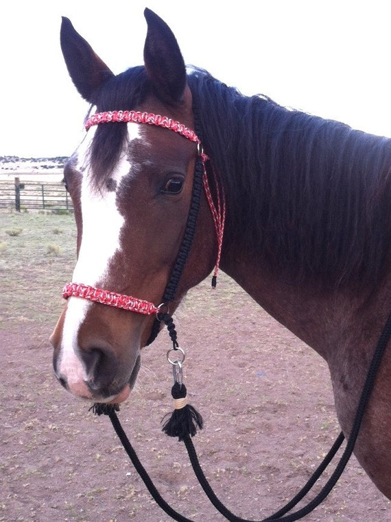 items similar to paracord bitless bridle chin slip