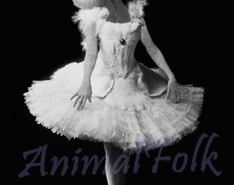 DANCER POODLE Art  Mixed Media Collage Print ballerina ballet dog puppy Altered Antique Photograph Victorian steampunk photo vintage