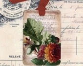 Fall Gift Tags ,  Autumn Gift Tags  ,  Oak Leaves and Acorns ,  Chrysanthemums ,