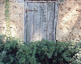 Blue Door Print - Door Photography - Farmhouse Decor - Wine Country Art - Olympia Greece Photo Blue and Green Rustic Home Decor Ivy