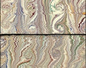1800's Antique Ivory Base French Curl Patterned Marbled Paper 2 Sheets