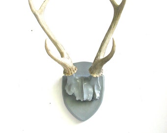 Faux Antlers Plaque Wall Hanging Rustic Modern Wall Mount Wall Decor Home Decor in gray with natural looking antlers-Large