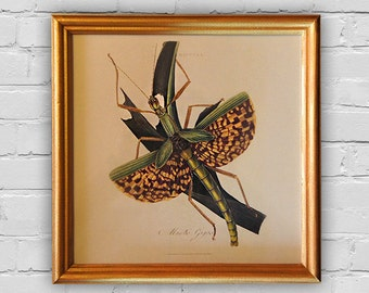 Vintage Print: Wood frame with handmade painting in gold color. 8'x8' (20x20cm)