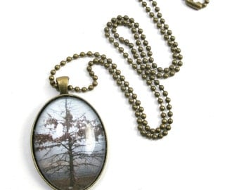 Foggy Winter Tree Photograph in a Domed Glass Cabochon in an Antique Brass Oval Pendant on a 2mm Antique Brass Ball Chain Necklace