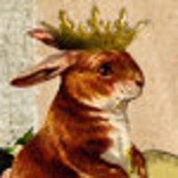 1rustyrabbit