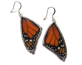 Real Monarch Butterfly Wing Earrings - Real Butterfly Jewelry - Big Bold Awesome Earrings