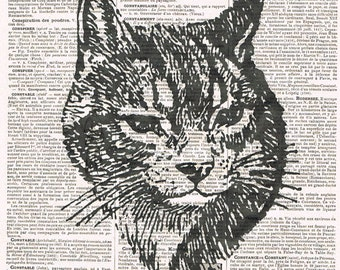 Cat, Feline.Book Page..gift.birthday.Repurposed Vintage Book.affordable home decor, antique, french.child.mixed media.altered art.Paris.eco