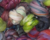 NEW FOR 2014 Superwash Merino roving  4 Ounces Pretty Curls with Exotics