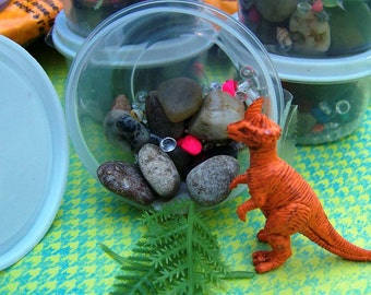 6pk Silly Science Paleontologist Dinosaur Birthday Party Kids Boys Girls Diorama Kit