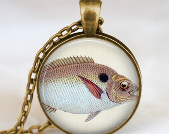 Fish necklace , Fish Jewelry,  Fish pendant ,fish aquarium necklace , fish charm, handmade jewelry, photo art pendant