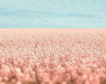 Pale pink photo, light blue, midwest, girly, feminine, little girl, prairie photography, dusty rose, blue sky, horizon, dreamy, meditation