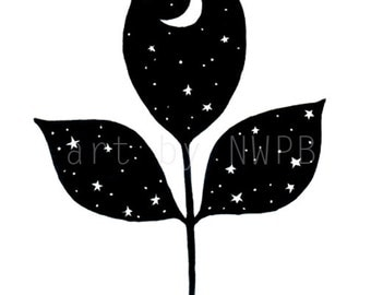 The night in a leaf. Art print. Illustration