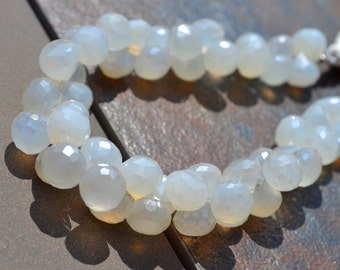 Pearly White Glowing CHalcedony ONion Briolette Beads  6