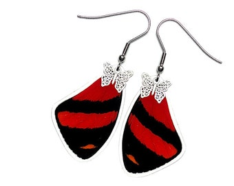 Real Butterfly Wing Earrings (Callicore Cynosura Forewing - E169)