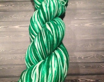 Snowy Forest variegated sock yarn