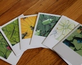 "Insects and Host Plants—set of six 4.25"" x 5.5"" notecards"