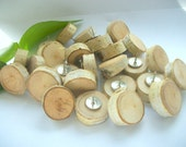 Birch Wood Thumb Tacks/Push PIns made from Tree Branches... 24 Natural Rustic Paper Birch 3/4 -1 inch...  For Office/Home Bulletin Boards