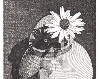 Black and White Reproduction Print of Original Pen and Ink Drawing Sarah's Daisy