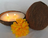 SOY COCONUT SHELL Candle