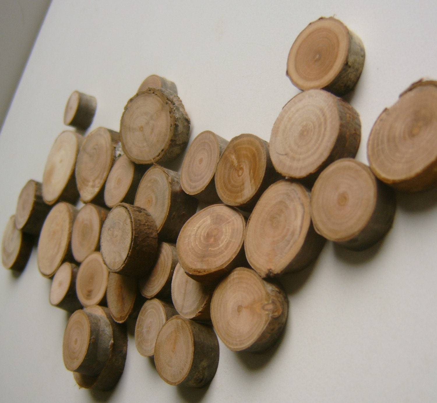 50 small wood craft circles tree branch slices for Wood circles for crafts