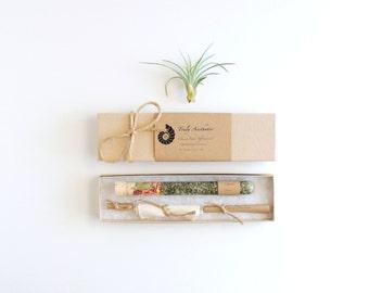 Organic & All Natural Spring Bath Salt Test Tubes Set of 10, Wedding Favor, Bridesmaid,  Hotel, Spa, Eco, Luxury Gift Set, Test Tube Favors