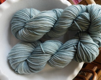 Thanks for All the Fish -- Decadent -- Hand Painted Superwash DK Merino Wool Yarn