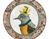 Whimsical Vintage Portrait : Large Pocket Mirror  ...Miss Beak