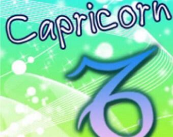 CAPRICORN  Zodiac Horoscope Incense 25 sticks with crystals
