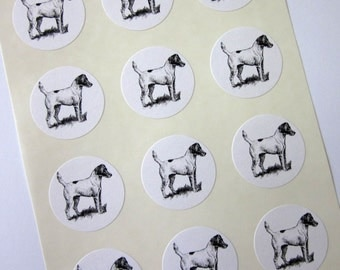 Jack Russell Terrier Dog Stickers One Inch Round Seals