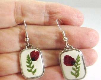 Posy For You, Pressed Flower Earrings, Real Flower Jewelry,  Dangles,  Resin (1308)