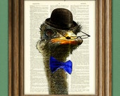 Dandy Ostrich with bowler hat and spiffy bow tie illustration beautifully upcycled dictionary page book art print