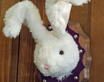 Mounted Easter Bunny - Peter Cottontail