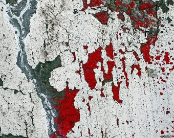 Cicatrix Caementicium - Distressed Surface Abstract Fine Art Photo Print - Gallery Quality Home Decor in Various Sizes and Mounting Options