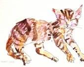 framed cat painting, 4x6, watercolor original